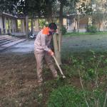 Bộ môn điện hưởng ứng Kế hoạch sô 53/KH-CĐBK, ngày 23/4/2021 về việc thực hiện quy hoạch, giao trồng, chăm sóc cây và vệ sinh môi trường tại cơ sở 2